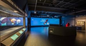 Σεισμός στο Μουσείο, έκθεση